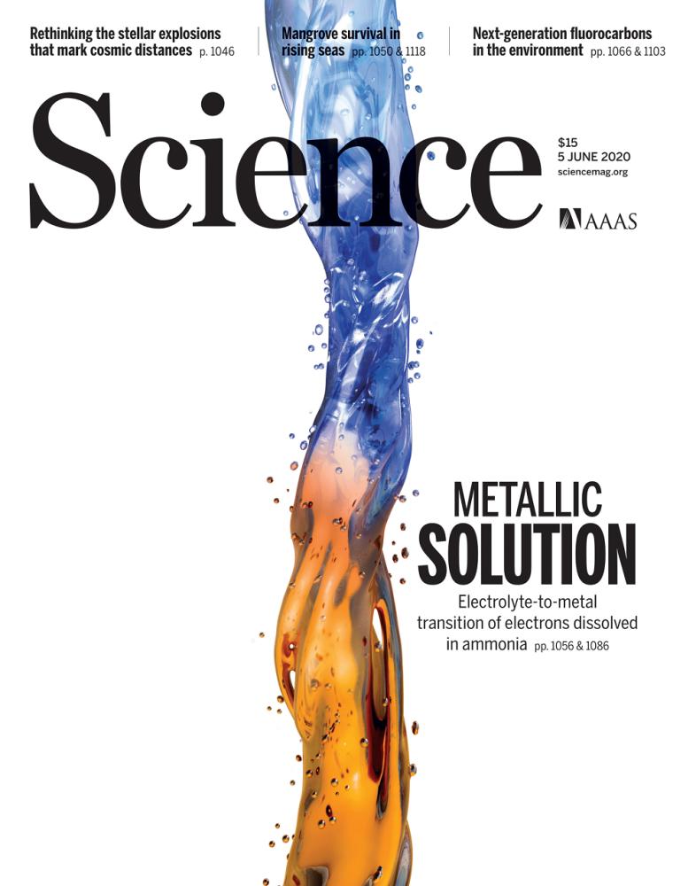 IT4Innovations na obálce SCIENCE
