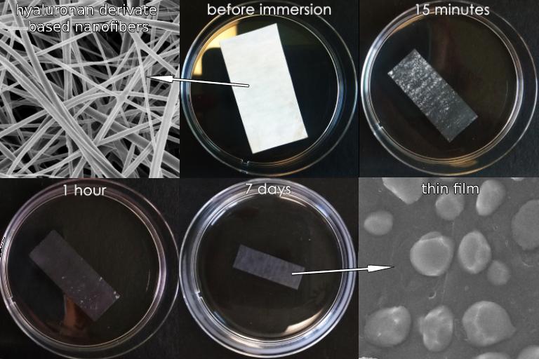 Nanovlákna na bázi kyseliny hyaluronové by se mohla uplatnit v biomedicíně