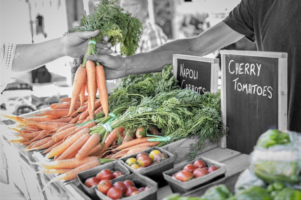 Kvalita potravin a klamání spotřebitele