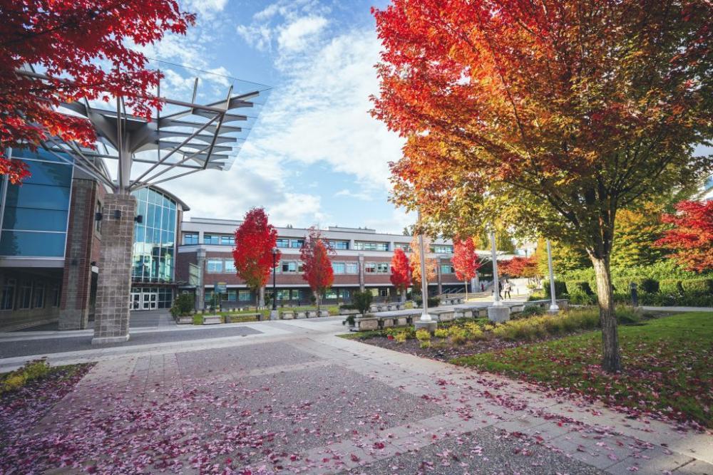 Navázání spolupráce s kanadskou Douglas College